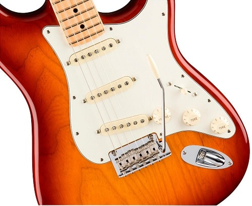 Fender American Professional Stratocaster -5